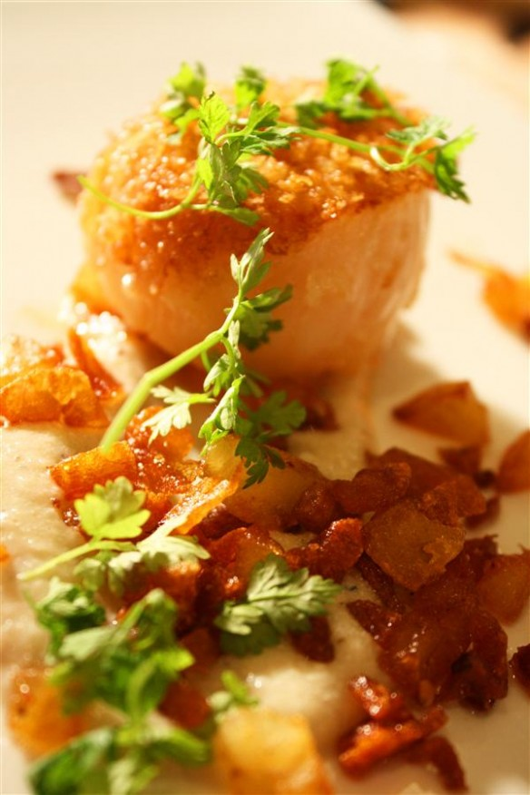 Panko Scallops on sunchoke puree and crispy potatos